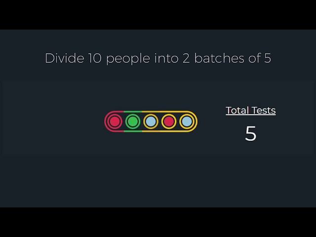 Boost Testing Capacity Tenfold Using Batch Testing