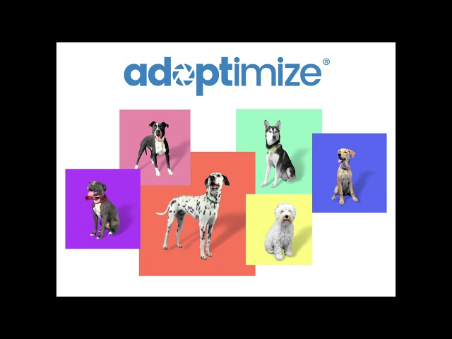 Adoptimize
